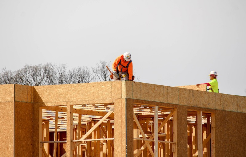 costruzione in legno materiali bioedilizia