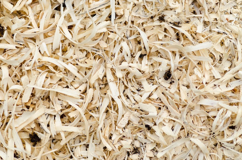 materiali bioedilizia fibra vegetale